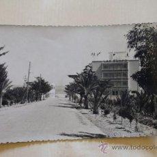 Postales: POSTAL. ALICANTE. GUARDAMAR DEL SEGURA. CARRETERA DE LA PLAYA. EXCLUSIVAS PALLARES.. Lote 38261034