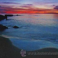 Postales: POSTAL PILAR DE LA HORADADA ALICANTE AÑO 2007. Lote 41375107
