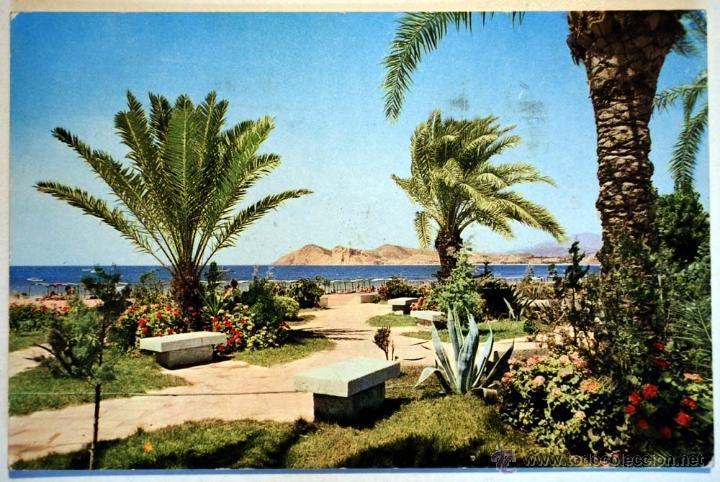 ALICANTE. BENIDORM. (Postales - España - Comunidad Valenciana Moderna (desde 1940))