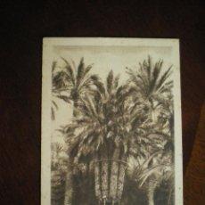 Postales: PALMERA IMPERIAL-HUERTO DEL CURA-ELCHE. Lote 42584952