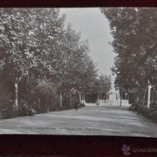 Postais: ANTIGUA FOTO POSTAL DE CASTELLON. ANDEN TRANSVERSAL DEL PASEO DEL OBELISCO. ESCRITA. Lote 43125384