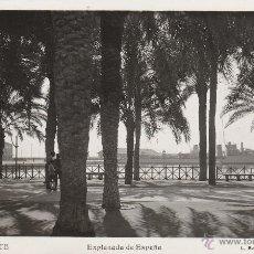 Postales: Nº 18871 POSTAL EXPLANADA DE ESPAÑA ALICANTE L ROISIN. Lote 46516038