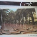 Postales: PASEO DE LA EXPLANADA DE ESPAÑA ALICANTE. Lote 47926002