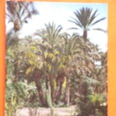 Postales: POSTAL - ALICANTE - ELCHE HUERTO DEL CURA - GARRABELLA - CIRCULADA. Lote 48502229