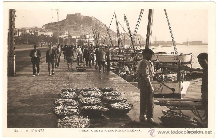 ALICANTE LLEGADA DE LA PESCA POR LA MAÑANA 1931. FOTO ROISIN (Postales - España - Comunidad Valenciana Antigua (hasta 1939))