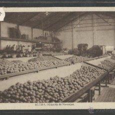 Postales: ALCIRA - ALMACEN DE NARANJAS - (32817). Lote 69261983