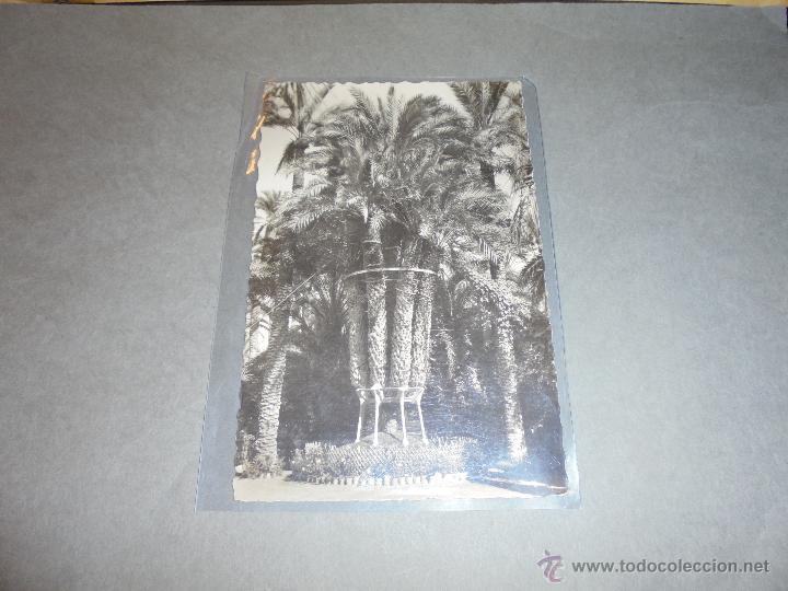25 - ELCHE ( ALICANTE ) HUERTO DEL CURA , PALMERA IMPERIAL DC. GARCIA GARRABELLA CIRCULADA 1960 . (Postales - España - Comunidad Valenciana Moderna (desde 1940))