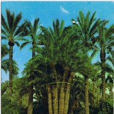 Postales: ALICANTE - ELCHE - HUERTO DEL CURA - PALMERA IMPERIAL. Lote 51695722