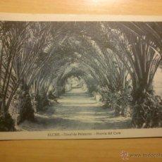 Postales: ELCHE - TUNEL DE PALMERAS HUERTA DEL CURA - L ROISIN. Lote 52023752