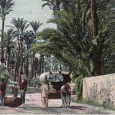 Postales: ALICANTE - ELCHE - PARTIENDO EL TRONCO DE PALMERA - REVERSO SIN DIVIDIR - FECHADA EN 1906. Lote 53783638