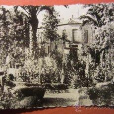 Postales: POSTAL NOVELDA ( ALICANTE ). Lote 54086364