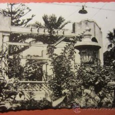 Postales: POSTAL NOVELDA ( ALICANTE ). Lote 54086373