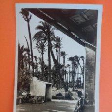 Postales: ANTIGUA POSTAL DE ELCHE - CASA DENTRO DEL BOSQUE DE PALMERAS - FOTO L. ROISIN...R -1747. Lote 44737162