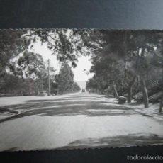 Postales: POSTAL ALICANTE. GUARDAMAR DEL SEGURA. AVENIDA DEL MAR. . Lote 56501657