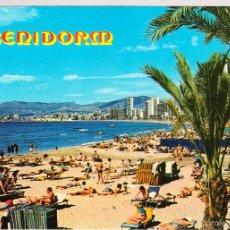 Postales: ALICANTE BENIDORM . Lote 57819506