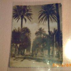 Postales: Nº 13 ALICANTE - PASEO DE GOMIS - FOTO ALFONSO SÁNCHEZ - FORMATO 14 CM X 11,3 CM. - SIN CIRCULAR. Lote 60070083