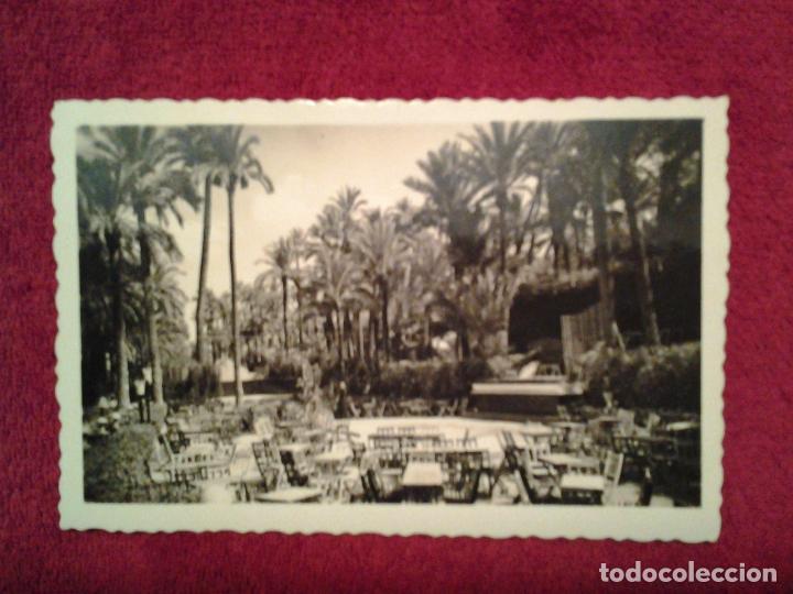ANTIGUA FOTO POSTAL, PARQUE MUNICIPAL DE ELCHE - ALICANTE - ESPAÑA (Postales - España - Comunidad Valenciana Antigua (hasta 1939))