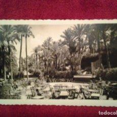 Postales: ANTIGUA FOTO POSTAL, PARQUE MUNICIPAL DE ELCHE - ALICANTE - ESPAÑA. Lote 63121568