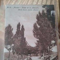 Postales: MORELLA. PASEO DE LA ALAMEDA. N. 16. Lote 64241771