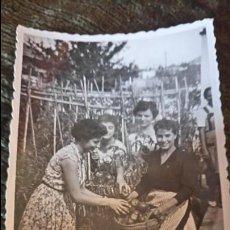 Postales: ANTIGUA FOTOGRAFÍA. AMIGAS EN UN HUERTO DE LA ELIANA. VALENCIA. FOTO AÑOS 50. . Lote 65826218