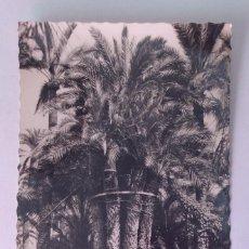 Postales: POSTAL FOTOGRÁFICA. PALMERA IMPERIAL. HUERTO DEL CURA. ELCHE. ALICANTE.. Lote 70482129