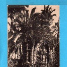Postales: POSTAL DE ELCHE PALMERA DEL CURA Nº 30 EDITA L, ROISIN SIN CIRCULAR . Lote 79063753