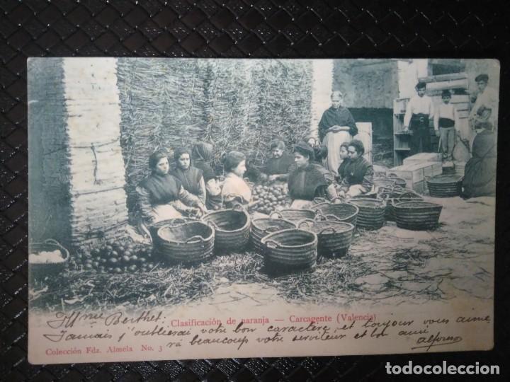 CLASIFICACIÓN DE NARANJA. CARCAGENTE. ( VALENCIA ). (Postales - España - Comunidad Valenciana Antigua (hasta 1939))