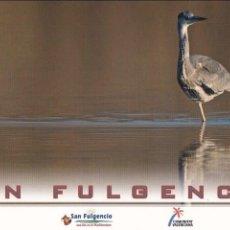 Postales: POSTAL SAN FULGENCIO. ALICANTE. Lote 96190415