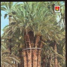 Postales: ELCHE.- HUERTO DEL CURA. PALMERA IMPERIAL. Lote 98547631