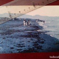 Postales: TARJETA POSTAL - Nº 17 - CASTELLON DE LA PLANA - PINAR DEL GRAO - L ROISIN . Lote 103646447