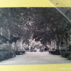 Postales: ANTIGUA POSTAL CASTELLON - PASEO DE RIBALTA - ADICIONES GAVI -. Lote 104166399