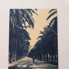 Postales: ALICANTE- PASEO DE LOS MARTIRES. EDICIONES MARIMON Nº 19. Lote 107420503