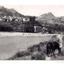 Postales: CAMPOS DE ARENOSO. CASTELLON.- RIO MIJARES. LA INDUSTRIA FOTOGRAFICA VALENCIANA. Lote 114808511
