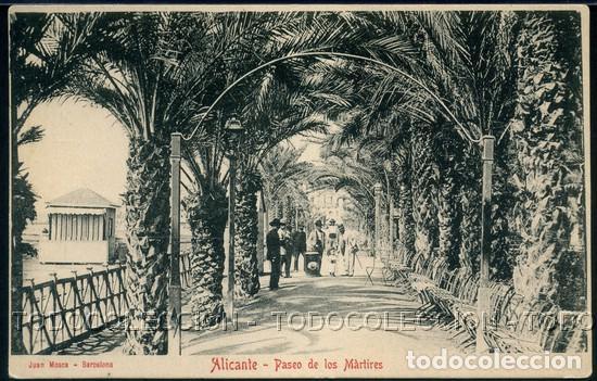 POSTAL ALICANTE PASEO DE LOS MARTIRES . JUAN MOSCA . CA AÑO 1900 (Postales - España - Comunidad Valenciana Antigua (hasta 1939))