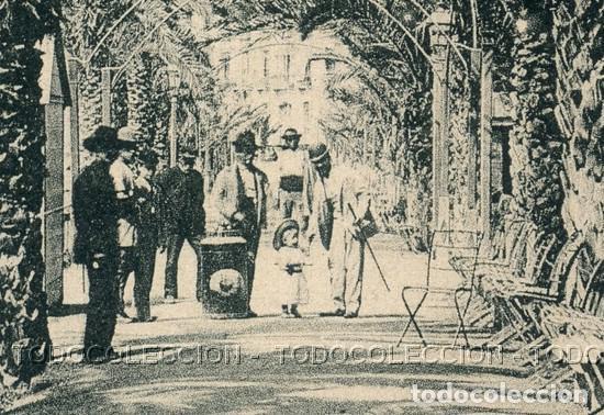 Postales: POSTAL ALICANTE PASEO DE LOS MARTIRES . JUAN MOSCA . CA AÑO 1900 - Foto 2 - 115124631