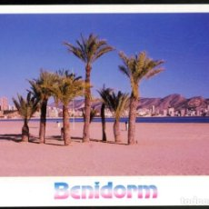 Postales: 779 - BENIDORM.- PLAYA PONIENTE.. Lote 115196751