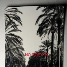Postales: ALICANTE FOTOGRÁFICA EXPLANADA DE ESPAÑA CIRCULADA ED. H. G . Lote 116288727