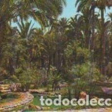 Postales: (29) ELCHE. HUERTO DEL CURA. ESTANQUE TROPICAL. Lote 116856491