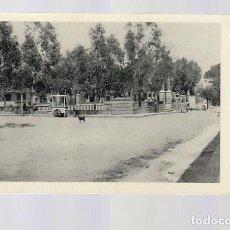 Postales: GUARDAMAR DEL SEGURA (ALICANTE).- GLORIETA. Lote 123047071
