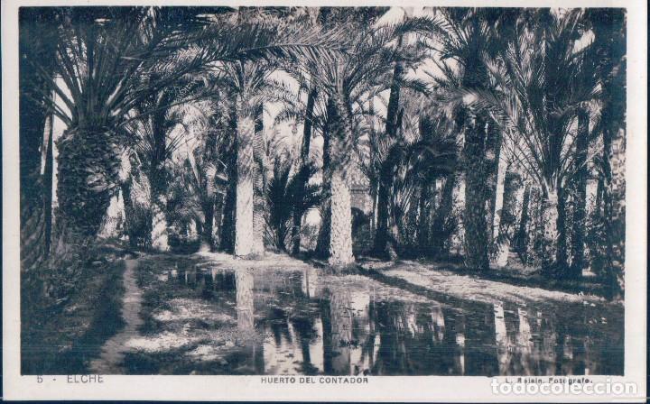 ANTIGUA FOTO POSTAL DE ELCHE (ALICANTE) HUERTO DEL CONTADOR - L. ROISIN (Postales - España - Comunidad Valenciana Antigua (hasta 1939))