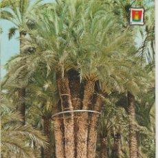 Postales: (3494) ELCHE. HUERTO DEL CURA. PALMERA IMPERIAL . Lote 131448502