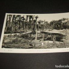 Postales: ELCHE ALICANTE HILADORES EN EL BOSQUE DE PALMERAS. Lote 132074842