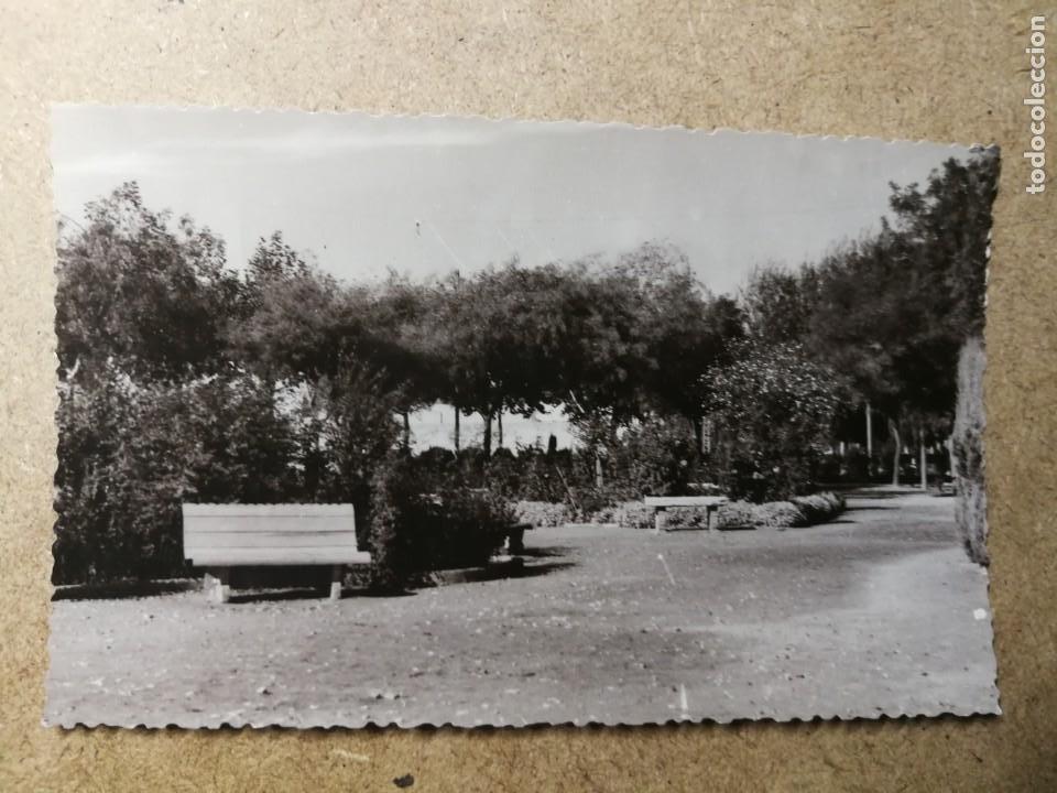 POSTAL PUEBLO DE ALGEMESÍ. VALENCIA. PARQUE JARDÍN. FOTO TALENS (Postales - España - Comunidad Valenciana Moderna (desde 1940))