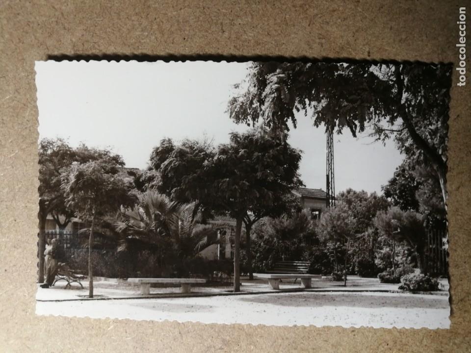 POSTAL PUEBLO DE ALGEMESÍ. VALENCIA. JARDÍN PLAZA DE LA ESTACIÓN. FOTO TALENS (Postales - España - Comunidad Valenciana Moderna (desde 1940))