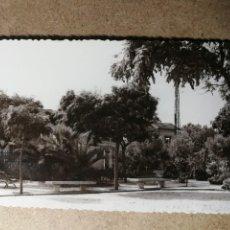 Postales: POSTAL PUEBLO DE ALGEMESÍ. VALENCIA. JARDÍN PLAZA DE LA ESTACIÓN. FOTO TALENS. Lote 132319194