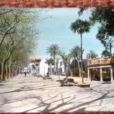 Postales: JATIVA - PASEO - ED. ARRIBAS, Nº 13 - POSTAL COLOREADA. Lote 132369646