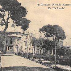 Postales: NOVELDA (ALICANTE).- LA ROMANA.- EN LA PINADA. Lote 140371626