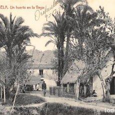 Postales: ORIHUELA (ALICANTE).- UN HUERTO EN LA VEGA. Lote 140372062