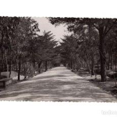 Postales: GUARDAMAR DE SEGURA.(ALICANTE).- AVENIDA CAUDILLO. Lote 147573650