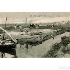 Postales: VALENCIA.- RECOLECCION DE ARROZ. Lote 148370430